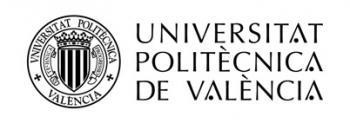 Universidad Politècnica de València (UPV)