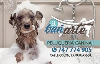 A bañArte peluquería canina