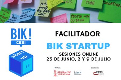 Sesiones online Facilitador BIK Startup