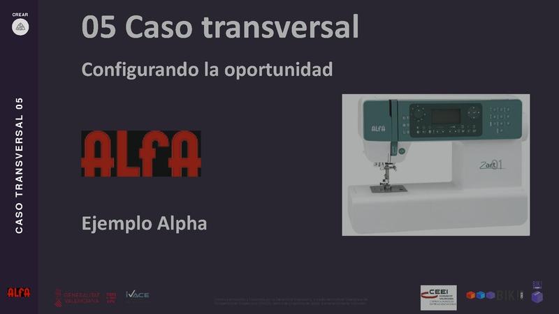 CASO TRANSVERSAL 05 Alfa
