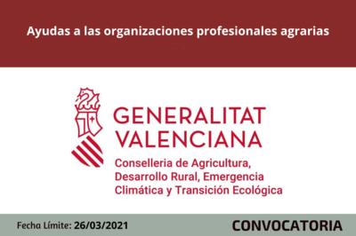 Ayudas a las organizaciones profesionales agrarias (OPA)